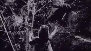 Dekho Kasam se Kasam || Tumsa Nahin Dekha (1957) || Mohd. Rafi & Asha Bhonsle || {Old Is Gold}