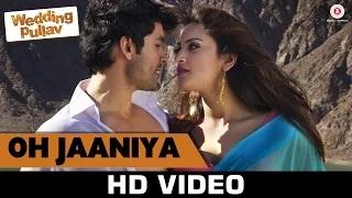 Oh Jaaniya Song - Wedding Pullav (2015)   Salim Merchant, Shreya Ghoshal & Raj Pandit
