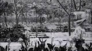 Mere Dil Mein Hai Ek Baat - Post Box 999(1958) - Lata Mangeshkar, Manna Dey - {Old Is Gold}