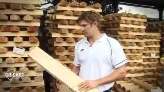 Shane Watson on how a bat is built