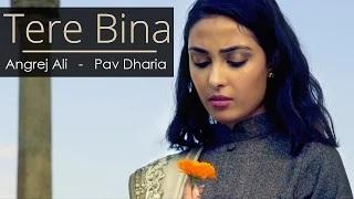 New Punjabi Songs - Tere Bina - Angrej Ali - Pav Dharia