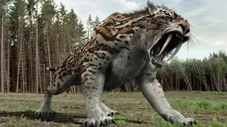 Top 10 Most Amazing Extinct Animals HD