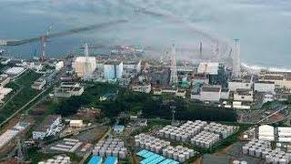 Japan Earthquake Small tsunami triggered