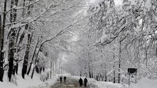 Mercury dips below freezing point Kashmir, tourists enjoy ski