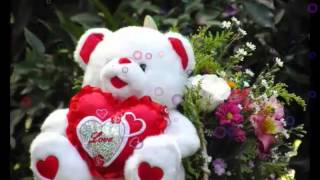 Happy Teddy Day 2016 SMS - Valentine Day