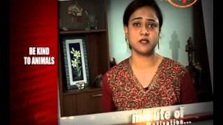 Be Kind to Animals - Jayanthi Lyengar (Motivational Speaker) - Minute Of Motivation