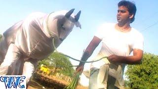 Jarsee baachhee - Bhojpuri Comedy Scene - Comedy Scene From Bhojpuri Fil '' Suhaag'' - Pawan Singh