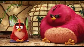 "THE ANGRY BIRDS Movie Film Clip - ""Nice Chatting With You"" feat Sean Penn"