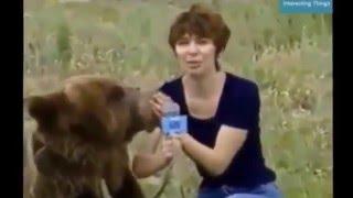 Most Shocking Animal Attacks On Human - Crazy Animal Attack