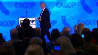 Trump: 'Felt Like I Was Crossing the Border'
