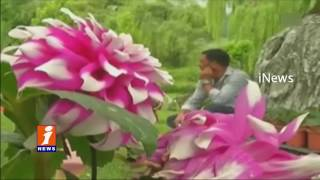 Flower festival attracts tourists in Jammu and Kashmir | iNews