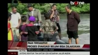 Raw: Over 30 Whales Stranded on Indonesia Island