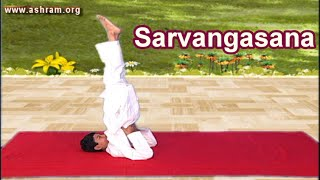 Sarvangasana and it's Benefits - Yoga Asanas - International Yoga Day Special 2016 , 21st June