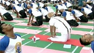 International Yoga Day: PM Modi announces awards for good yoga