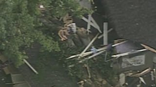 Raw: Girl, 11, Dies After Tree Falls onto Cabin