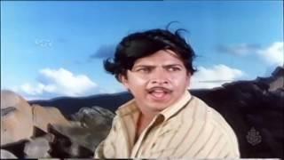 Haavina Dwesha Hanneradu Varusha Song | Nagarahavu Movie | Kannada Best Song | SPB |Dr.Vishnuvardhan