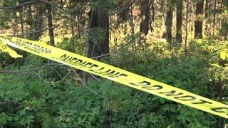 Grizzly Bear Kills Mountain Biker in Montana
