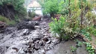 Uttrakhand Heavy rain