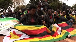 Zimbabwe protest leader freed as case dismissed