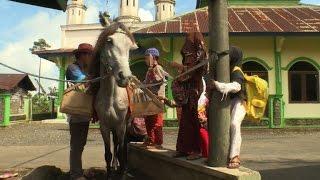 Horseback library serves Indonesia's remote readers