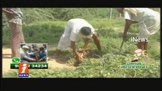 Gongadi Satyam Plants 100's of Trees in Nalgonda Dist | iNews