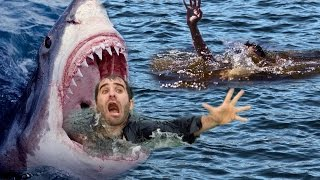 Craziest Animal Fights Caught On Camera - Most Amazing Wild Animal Attacks – Sharks, Crocodile