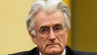 Karadzic appeals war crimes conviction