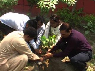 विश्व पर्यावरण दिवस पर दिल्ली में लगाए गए पेड़-पौधे