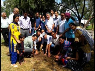 रोटरी क्लब ने विभिन्न संस्थाओं के सहयोग से रोपे देवदार के पौधे