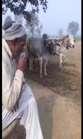 कर्ज में डूबा एक और किसान चढ़ा मौत की भेंट