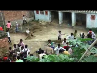 तेंदुए का आतंक, कई लोगों को किया घायल