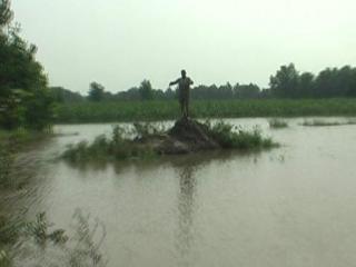 बाढ़ में फंसे व्यक्ति का LIVE रेस्क्यू