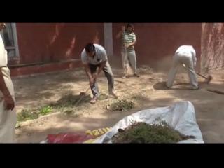 पंचकूला में CID अधिकारियों ने चलाया सफाई अभियान