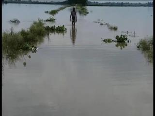 गंगा नदी ने मचाया कोहराम, बाढ़ से लोग कर रहे हैं पलायन