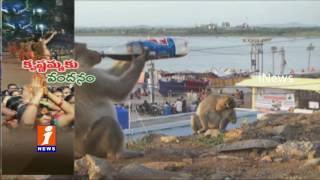 Monkey Drinks Thums Up at Beechupalli Pushkar Ghat | Mahabubnagar | iNews