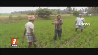Farmers Protest Unique Playing Volleyball in Paddy Field | Drought | iNews