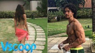 Lovebirds Tiger Shroff & Disha Patani's Romantic Vacations - VSCOOP