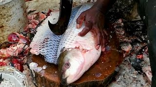 Amazing Cutting Fish - Fastest Rohu Fish Cutting - Big Carp Clean And Fillet Videos