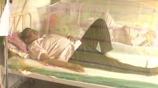 इंसेफ्लाइटिस और डेंगू के बाद अब बर्ड फ्लू खौफ