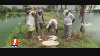 Government Banned Catfish Farming Illegally in Nellore District For High Profits iNews