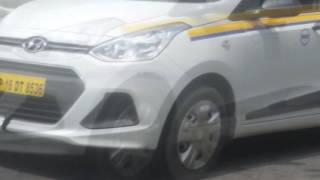 live snake accident... snake killed on delhi road!!