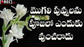 Reason Behind Mogali Flower not using in Hindu Pooja