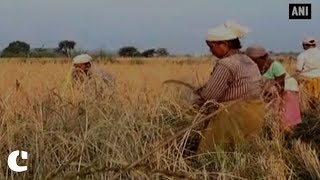 Farmers permitted to draw up to Rs 25,000 per week against crop loans
