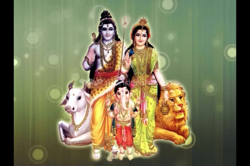 Lal Kitab Mantra To Increase Love Between Husband Wife  in ameirca england  +91-9694102888