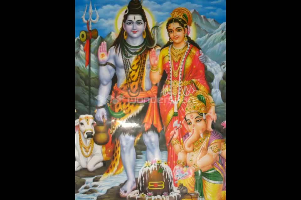 +91-9694102888 Love marriage problem solutions | India - Love astro solutions in america england