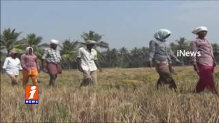 Ban on Notes Farmers Face Problems on Currency East Godavari District iNews