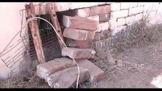 स्टेट बैंक आफ पटियाला में चोरी की कोशिश