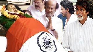 Bollywood Celebs MOURN Jayalalithaa's Death - Shahrukh Khan, Amitabh Bachchan & More