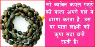 5 Guarantee Tips for Prosperity. #AcharyaAnujJain दरिद्रता दूर करे, कमल गट्&#233