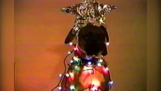 AFV Christmas Decoration Overload Compilation - Holiday Edition!